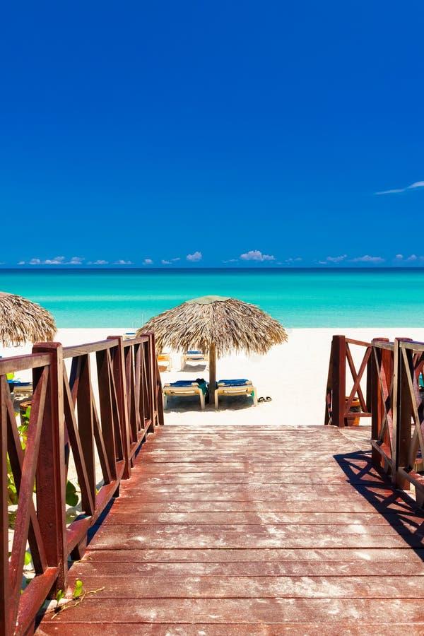 strand cuba som för till den tropiska walkwayen royaltyfri fotografi