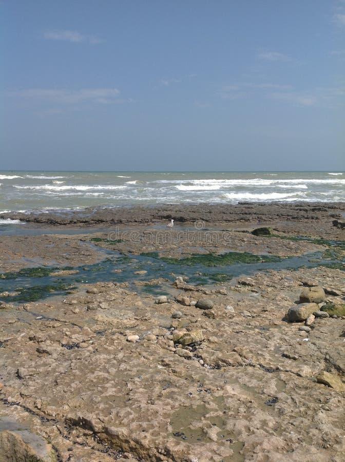 Strand dag-D stock foto