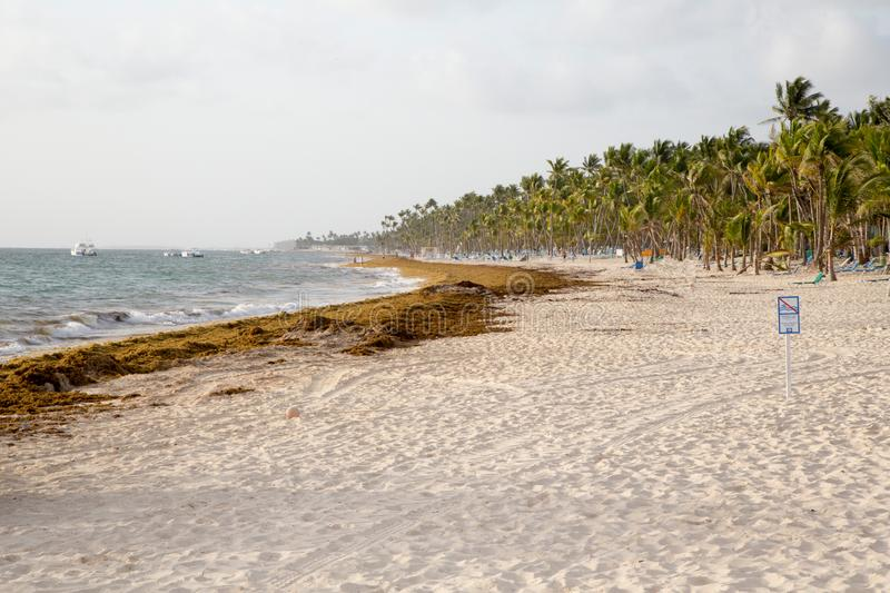 Strand in de Dominicaanse Republiek royalty-vrije stock afbeeldingen