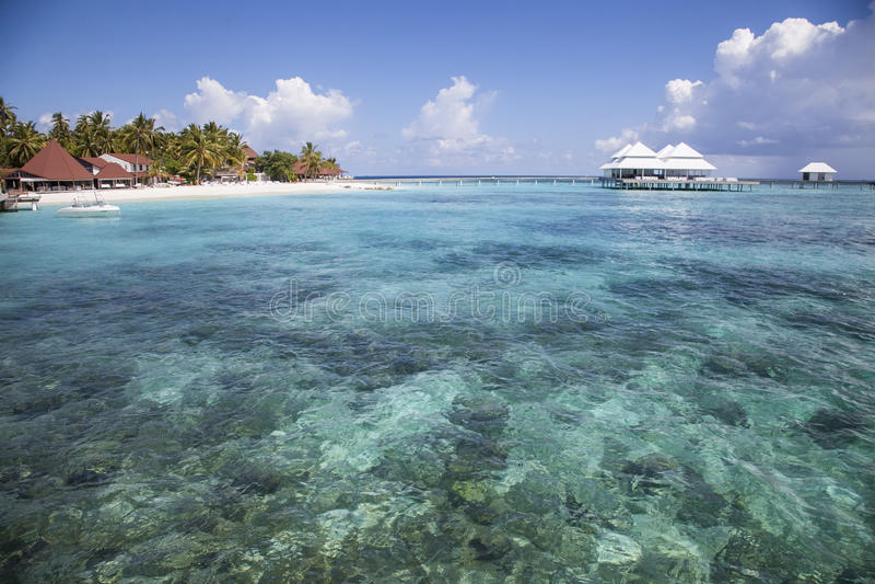 Strand in den Maldives stockfoto