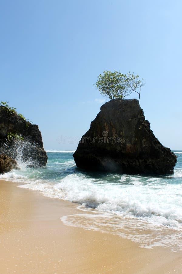 Strand in der Insel Indonesien lizenzfreies stockbild