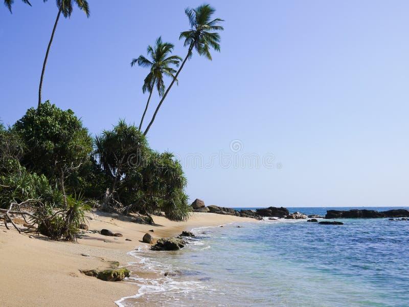Strand dicht bij Mirissa, Sri Lanka royalty-vrije stock foto's