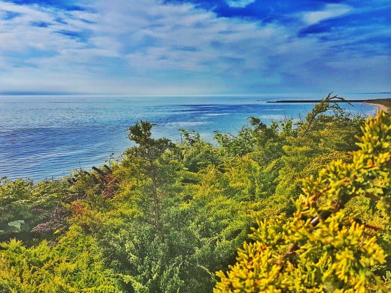 Strand-Dschungel lizenzfreies stockfoto