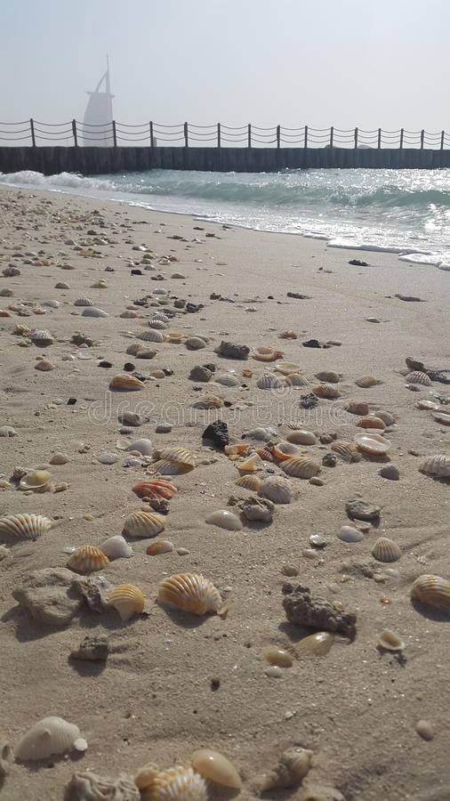 strand dubai royaltyfria bilder