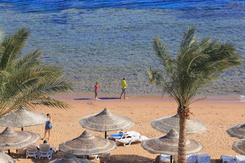 Strand in Egypte, Sharm el Sheikh stock afbeeldingen