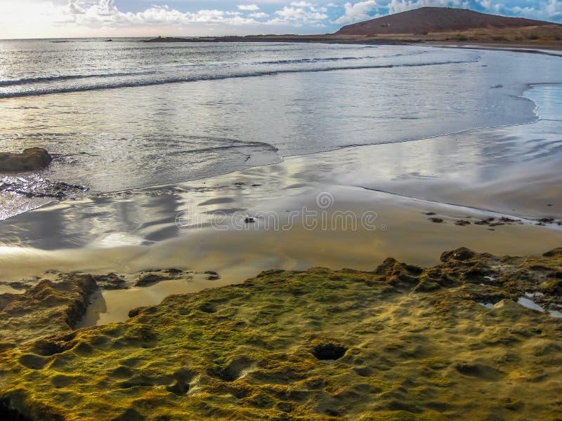 Strand EL Medano, Teneriffa stockfoto