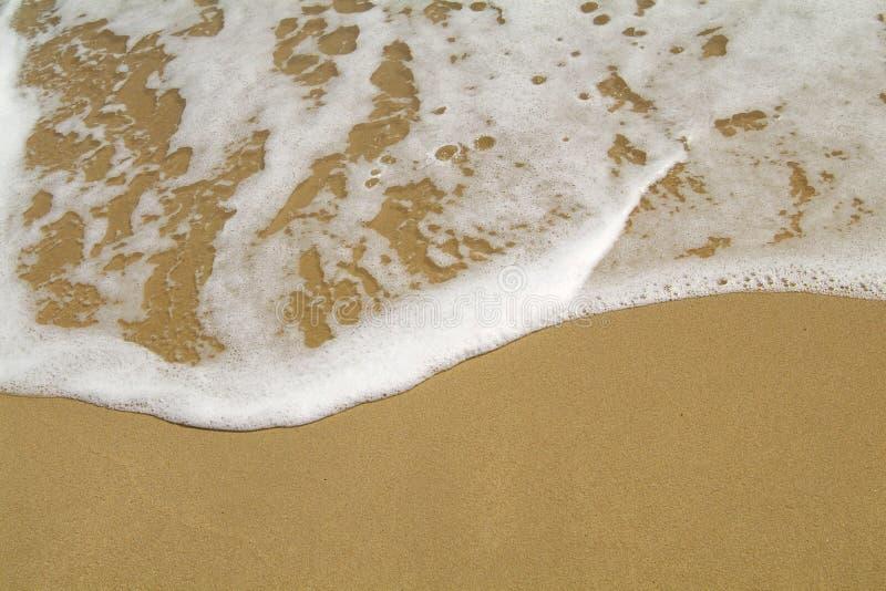Strand en water royalty-vrije stock foto's