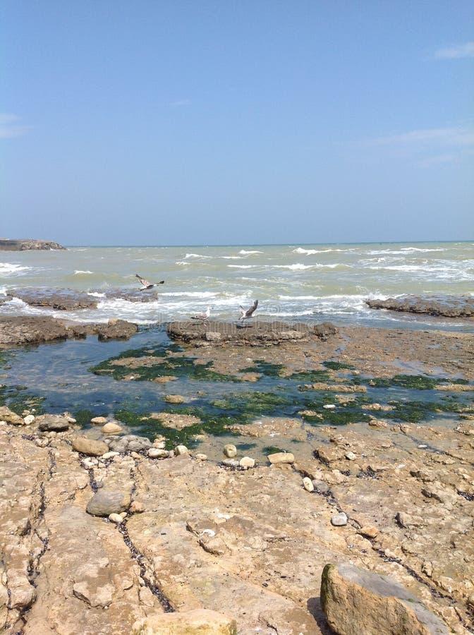Strand för dag-D arkivfoto