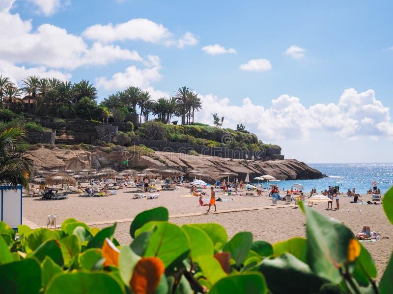 Strand för El Duque på Costa Adeje kanariefågelöar spain tenerife fotografering för bildbyråer