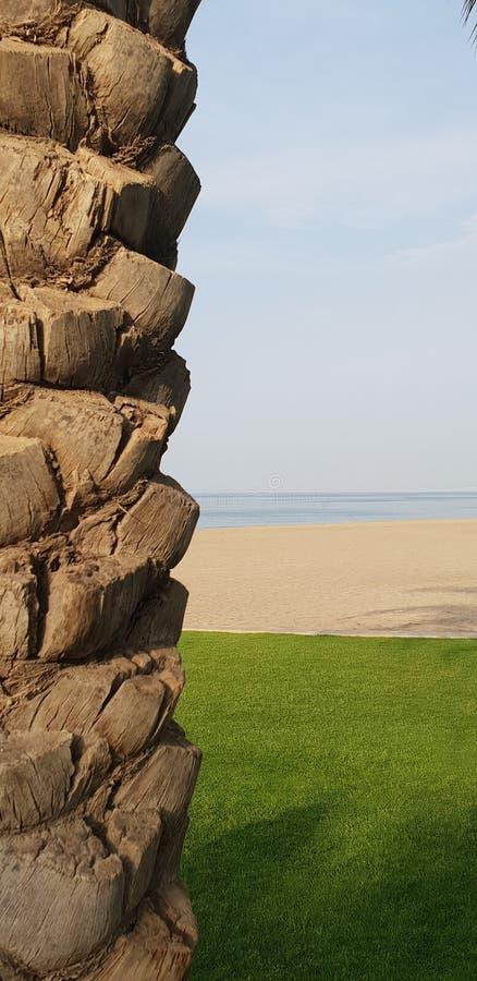Strand för Muscat Oman almouj royaltyfri bild