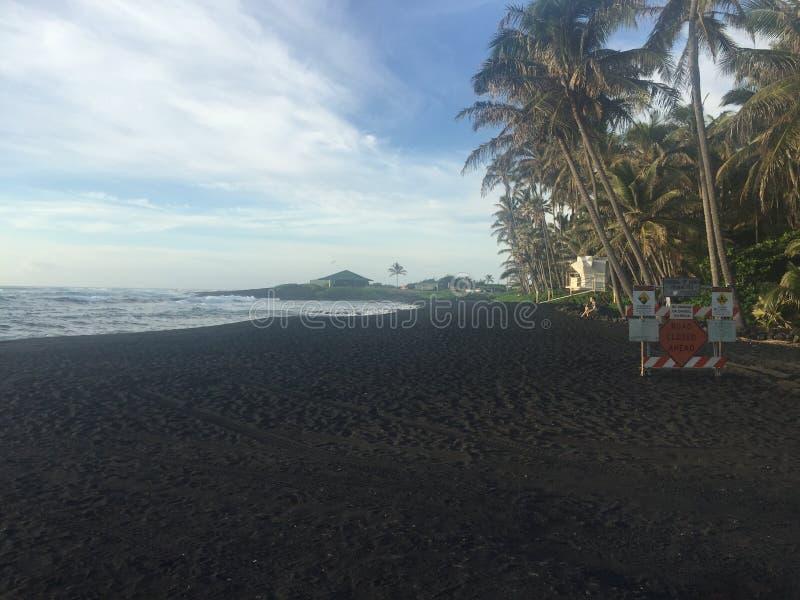 Strand f?r Punaluu svartsand Ka& x27; u Hawaii 2018 arkivfoton
