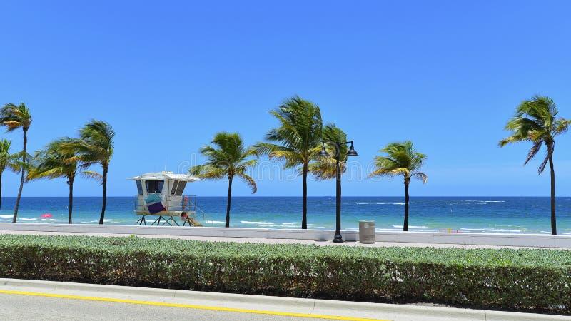 strand Fort Lauderdale royaltyfri fotografi