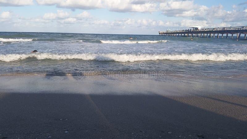 strand Fort Lauderdale royaltyfri bild