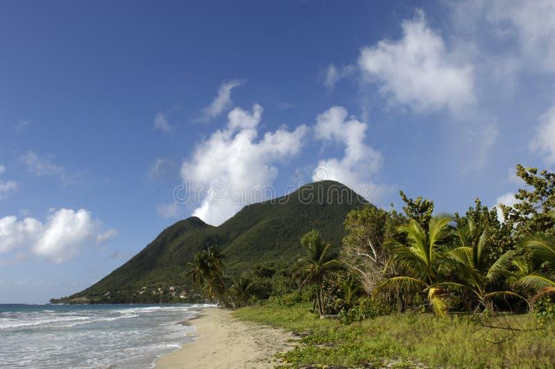 strand france martinique fotografering för bildbyråer