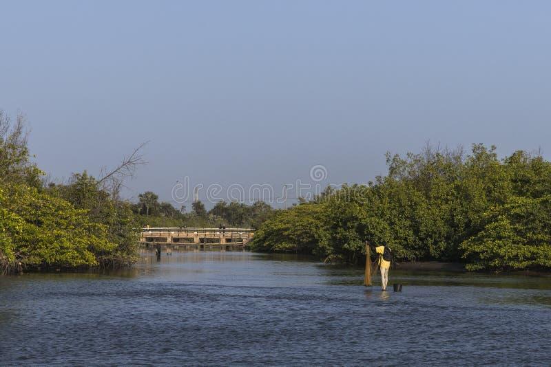 Strand in Gambia royalty-vrije stock afbeelding