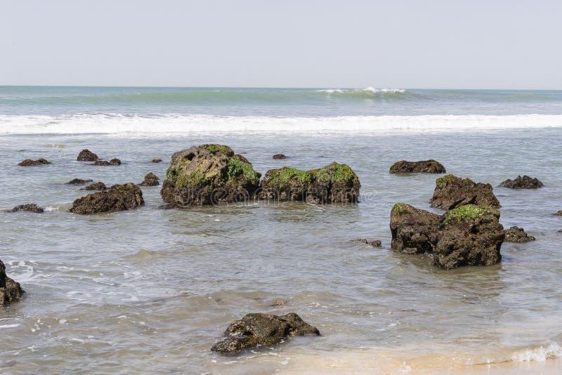 Strand in Gambia stock afbeeldingen