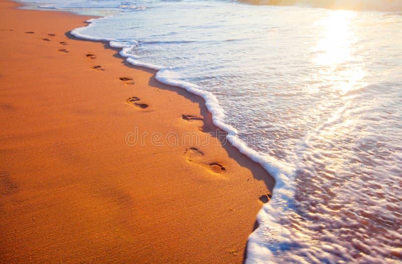 Strand, golf en voetafdrukken in zonsondergangtijd stock foto's