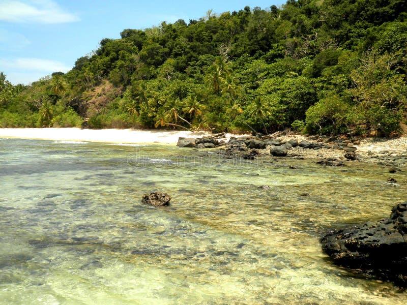 Strand in het Eiland van Fiji stock afbeeldingen