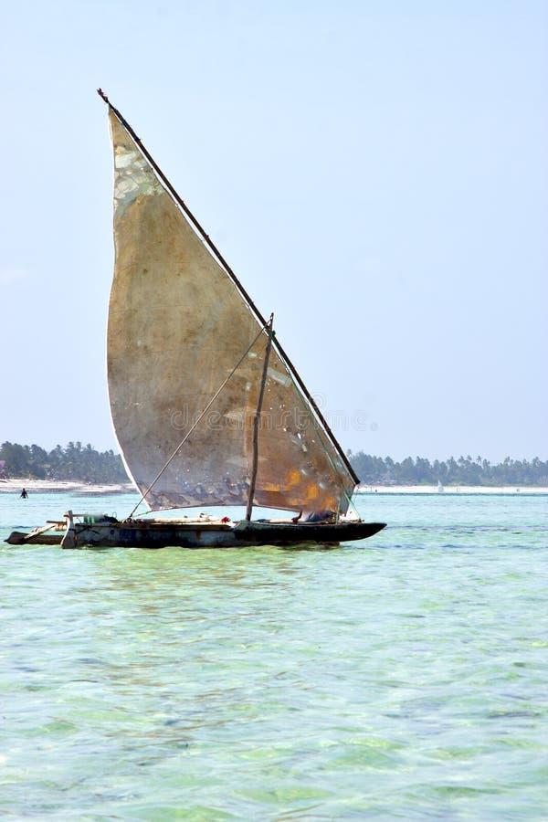 Strand in het zeewier van Zanzibar stock afbeelding