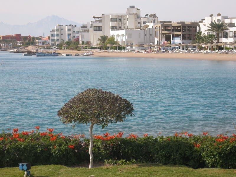 Strand in Hurgada, Egypte royalty-vrije stock foto's