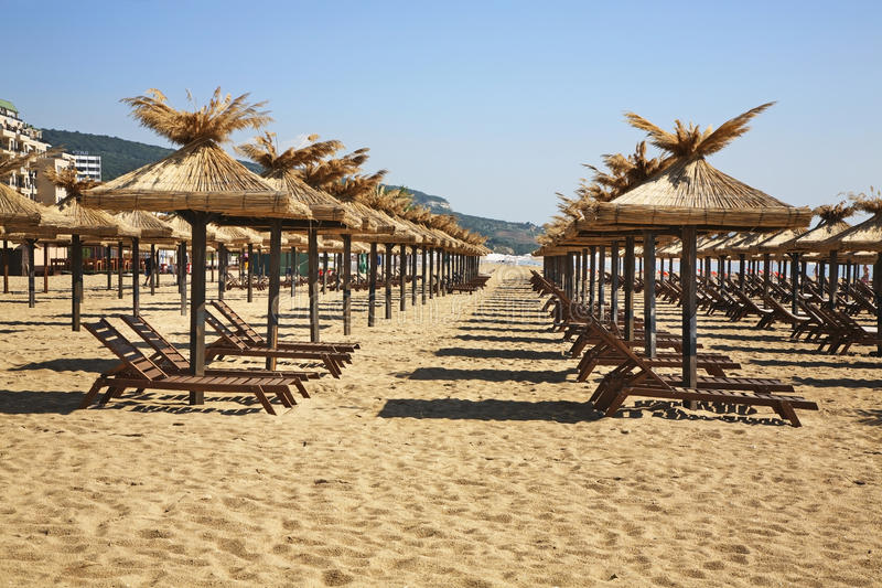 Strand i guld- sander lökformig royaltyfria bilder