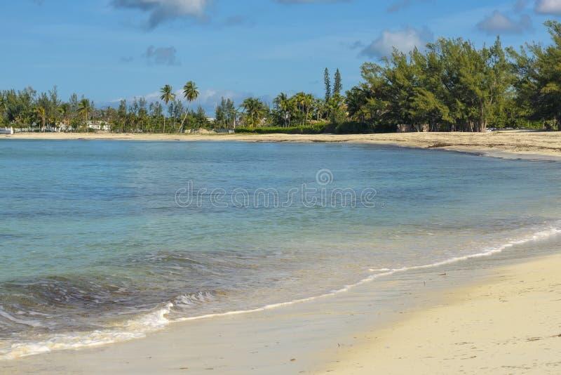 Strand i Nassau, Bahamas fotografering för bildbyråer