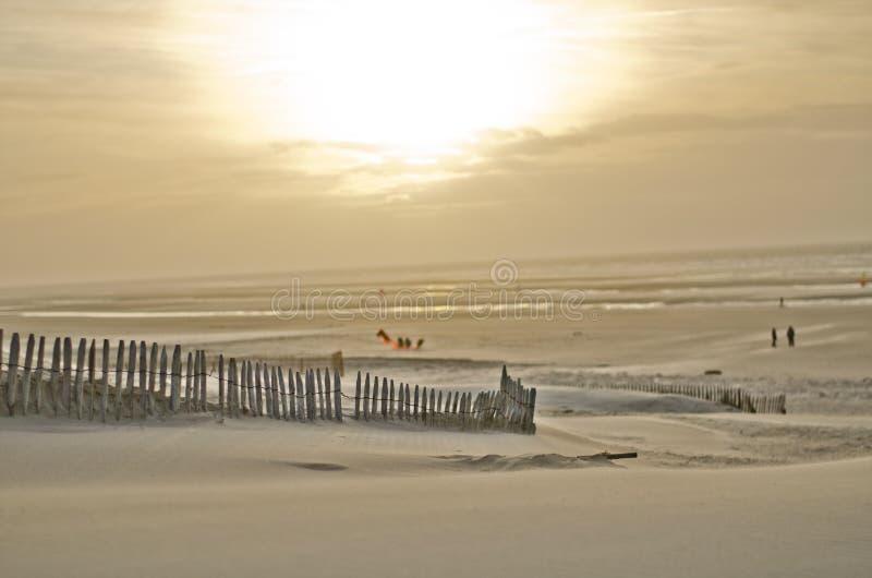 Strand i nord av Frankrike royaltyfri fotografi