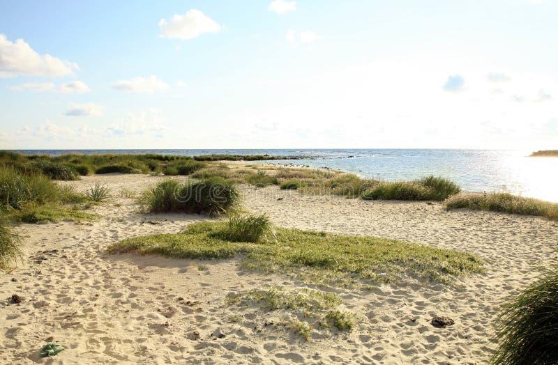 Strand i Snogebaek, Bornholm, Danmark royaltyfria foton