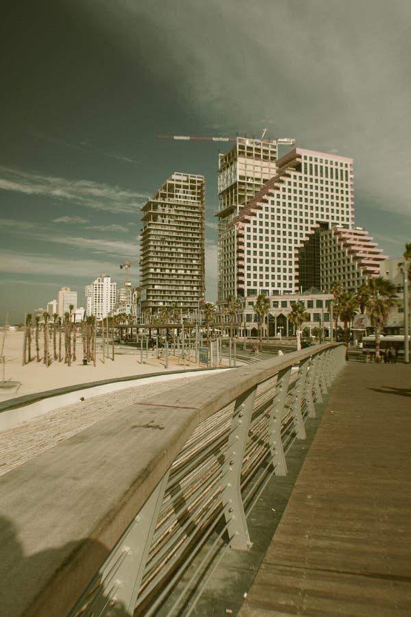 Strand i Tel Aviv i Israel royaltyfria bilder