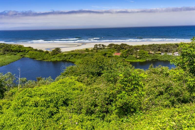 Strand-Küstenlinien-Wellen-Pazifischer Ozean Florence Oregon lizenzfreies stockbild