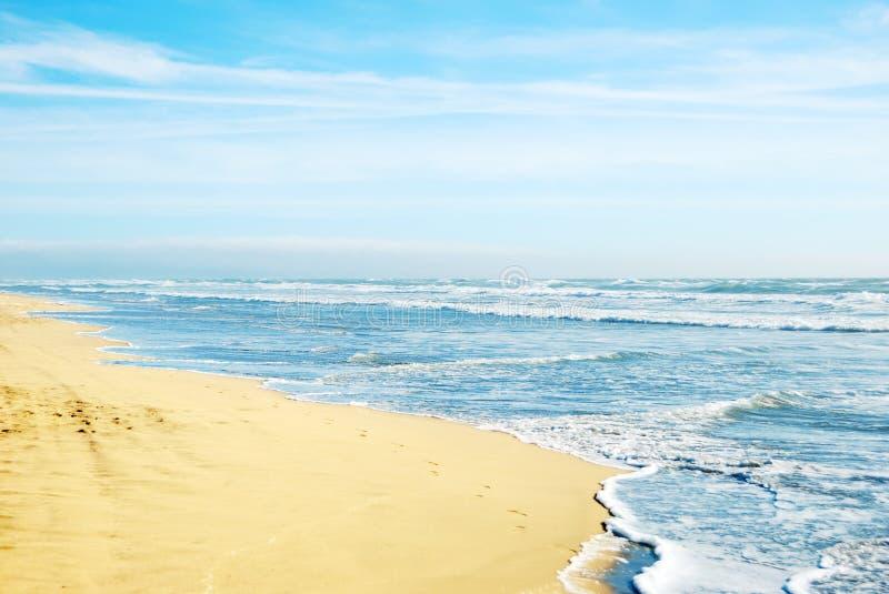 strand Kalifornien francisco san arkivfoton