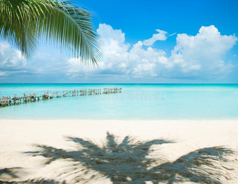 strand karibiska mexico arkivbilder