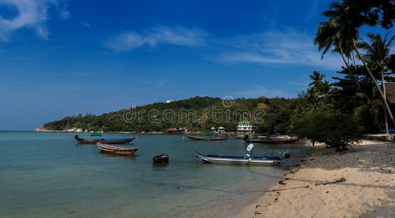 Strand Koh Tao Island royaltyfria bilder