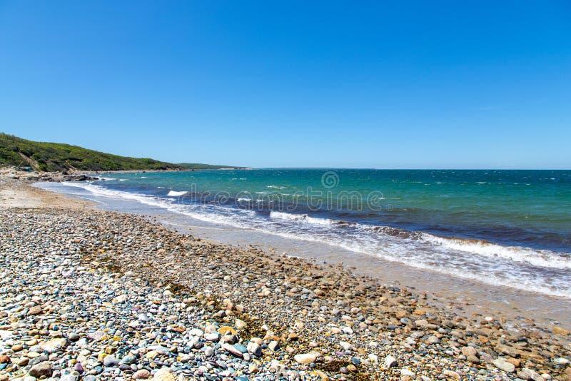 Strand längs fristaden för hals för cederträträd, Martha's Vineyard, MOR royaltyfria foton
