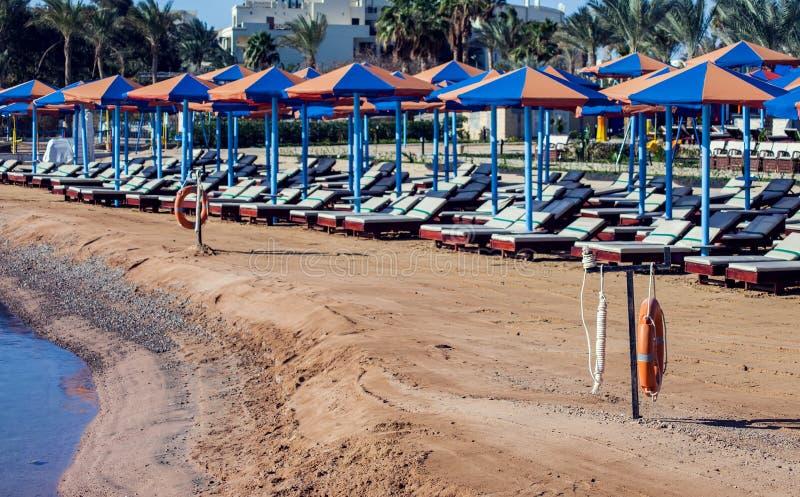 Strand med chaisevardagsrum som står i linje på beige sand Ferie och loppbegrepp royaltyfria foton