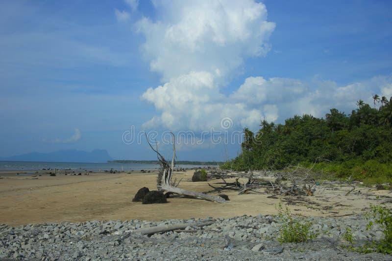 Strand med den fridsamma stenen royaltyfri bild