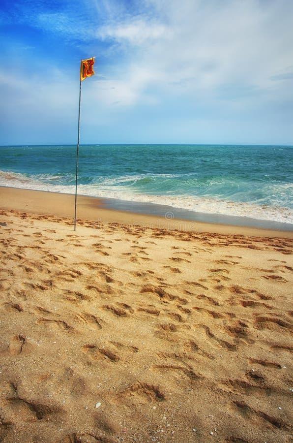 Strand med flaggan av Sri Lanka royaltyfri foto