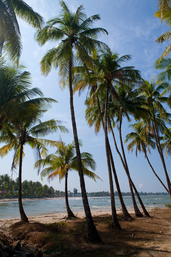 strand met glasheldere blauwe wateren van Andam royalty-vrije stock foto
