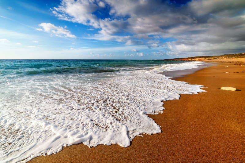 Strand met gouden zand royalty-vrije stock foto's