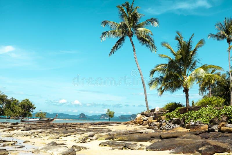 Strand met kokosnotenpalmen De Eilanden Thailand stock foto's