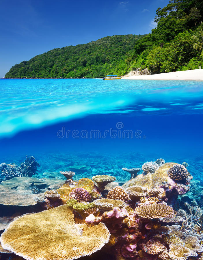 Strand met koraalrif onderwatermening royalty-vrije stock fotografie