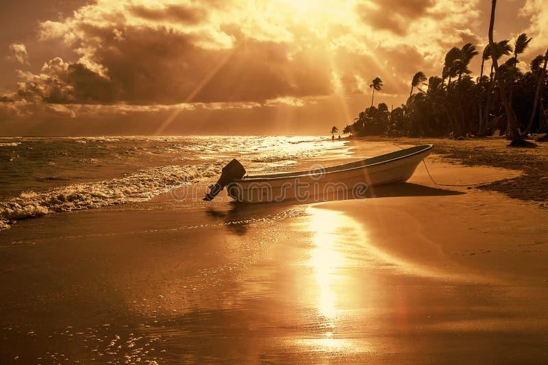 Strand met palmen en boot in zonsondergangtijd stock fotografie