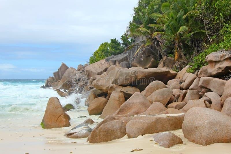 Strand met rotsen en palmen op het eiland Praslin stock afbeeldingen
