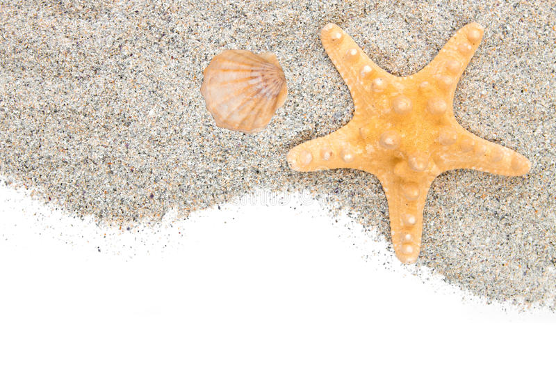 Strand met zandzeester en shell stock afbeelding