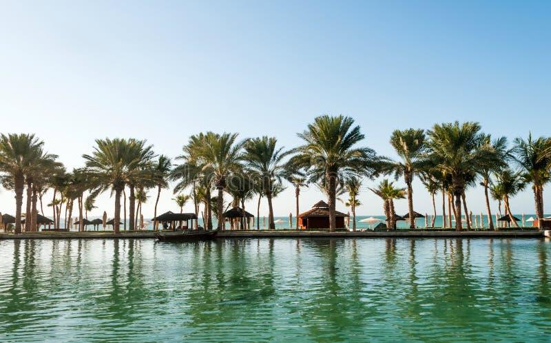 Strand mit Palmen in Dubai stockbild