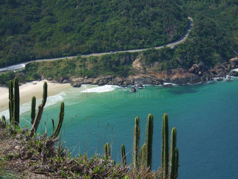 Strand nahe einem tropischen Wald stockfotografie