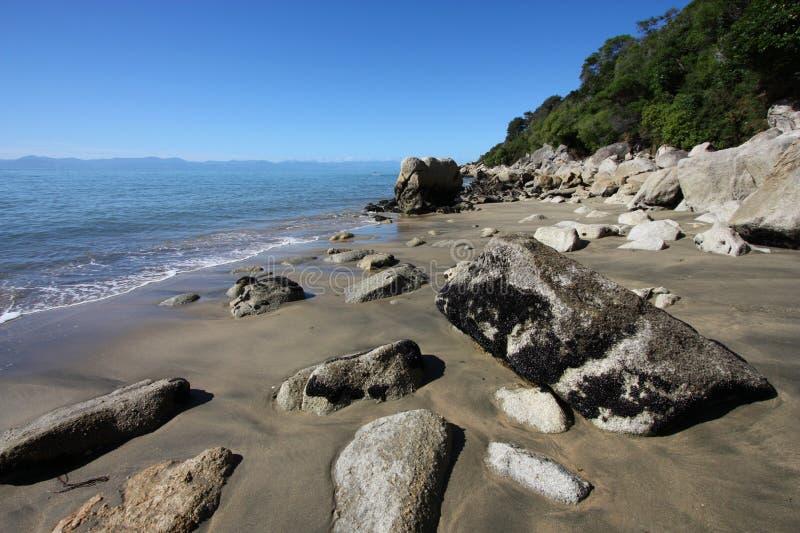 strand New Zealand royaltyfria bilder