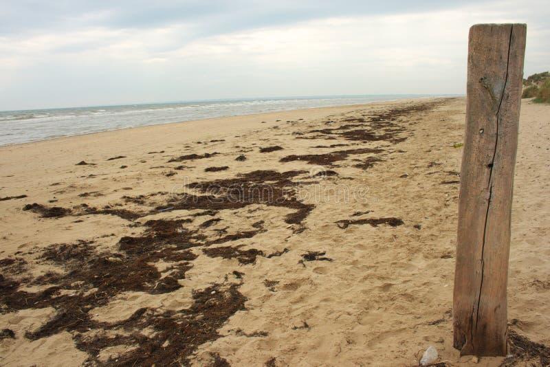 strand normandy utah royaltyfria foton