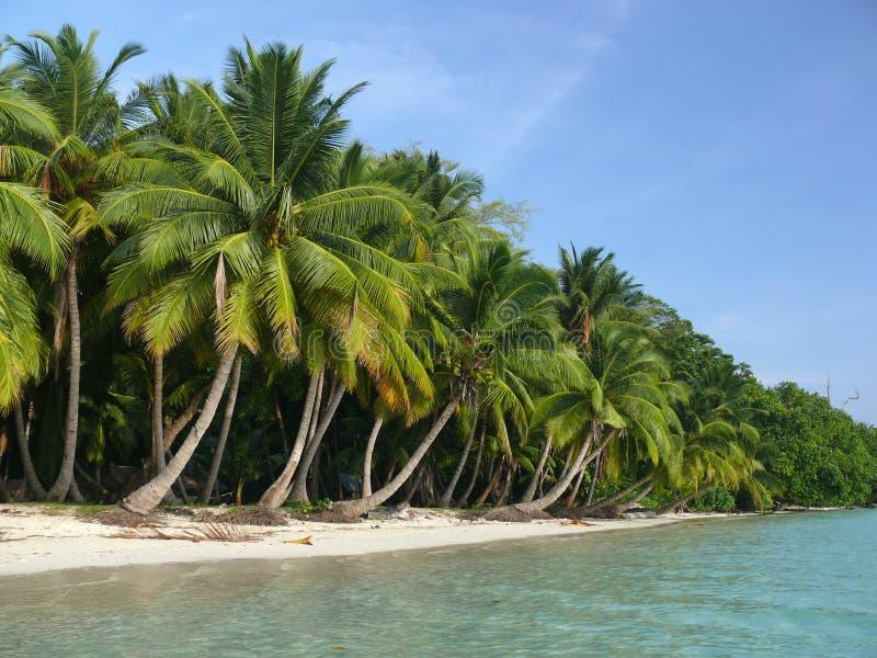 Strand nr 5, Havelock Eiland, Andaman Eilanden, Ind. royalty-vrije stock afbeeldingen