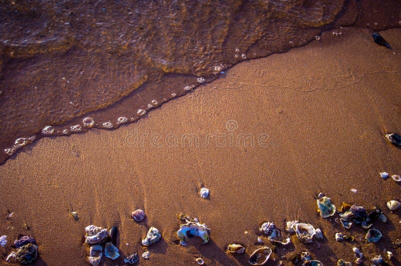 Strand- och bränningbakgrund arkivfoto